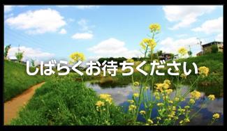 お知らせ映像